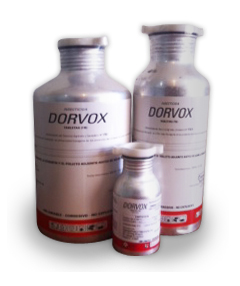 Dorvox